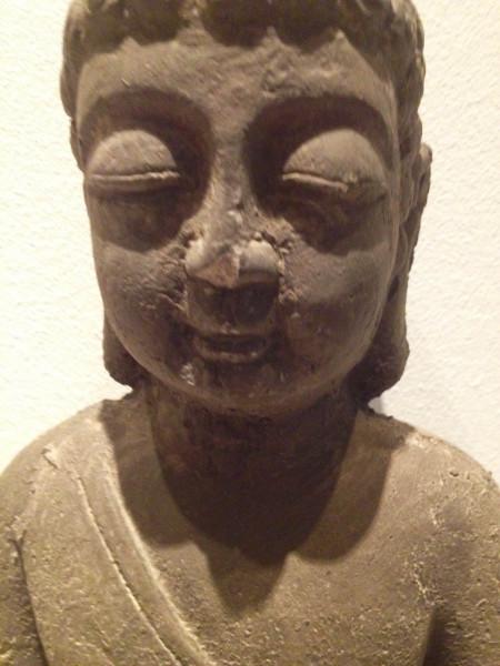 Buddha head dear