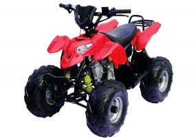 Sport FL 125