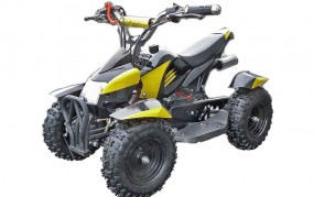 Racing Pocket Quad 50